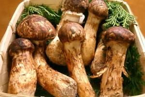 Применение грибов в японской кухне